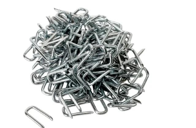 Galv Round Wire Nails